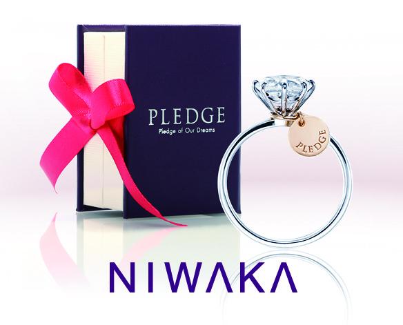 pledge_logo_2x1