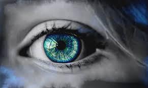 目の画像・1